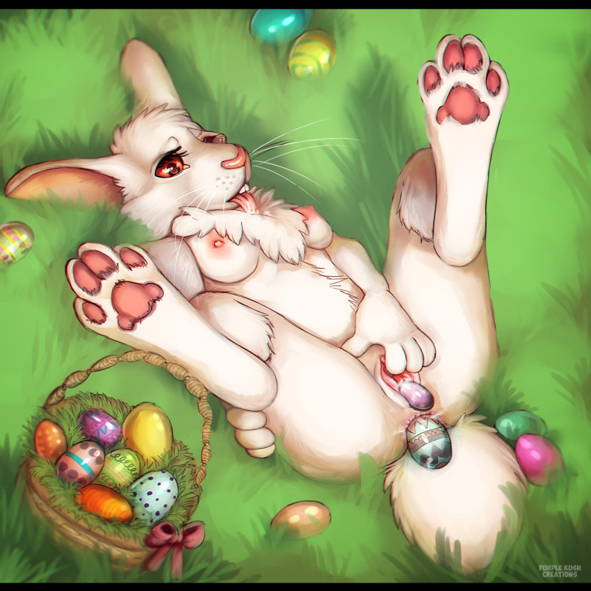 eggs painted easter like breasts Hunter x hunter aunt mito